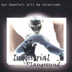 Industrial Playground: I played as 2nd guitarist but did no writing or recording.