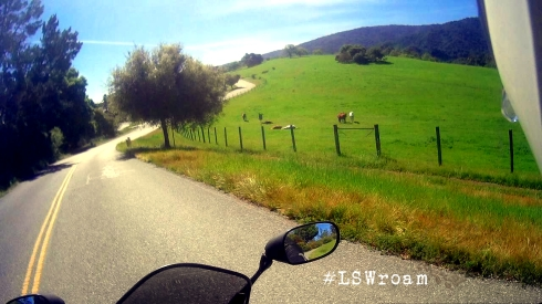 pov motorcycle riding country road