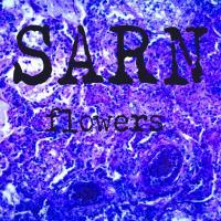sarn band music